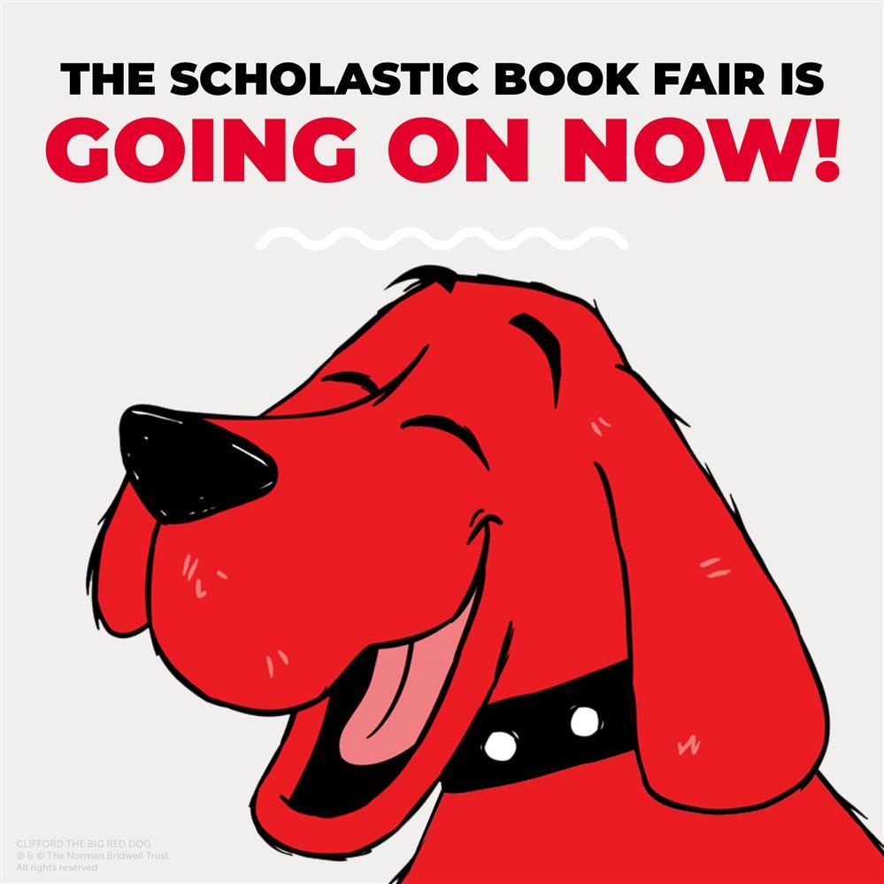 Online Book Fair is on
