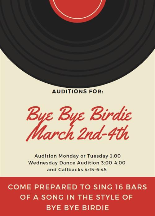 Bye Bye Birdie Auditions